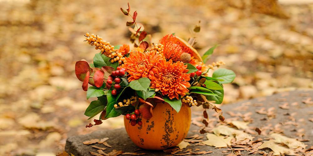 flori dentro a un contenitore zucca, composizione autunno